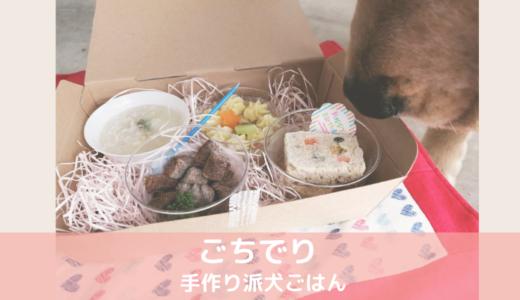 【ごちでり】アニバーサリーセット┃特別な日に手作り犬ごはんのごちそうでお祝いしよう!