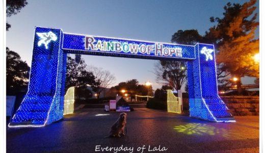 【木曽三川公園イルミネーション】冬の光物語「未来にかける希望の虹」Rainbow of Hope