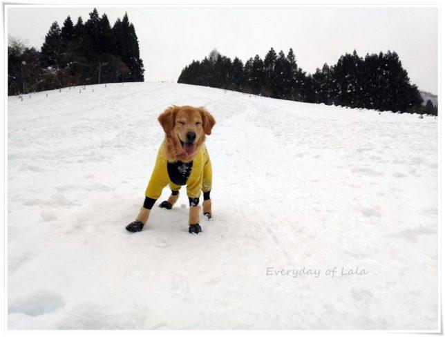 たのしい雪遊び