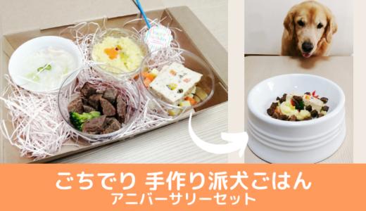 【リピート中】美味しい手作り犬ごはん『ごちでり』アニバーサリーセット