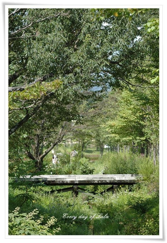 牧歌の里緑と橋