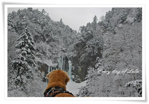 平湯の滝その2