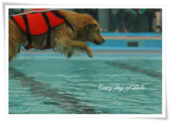 プールでジャンプ201206
